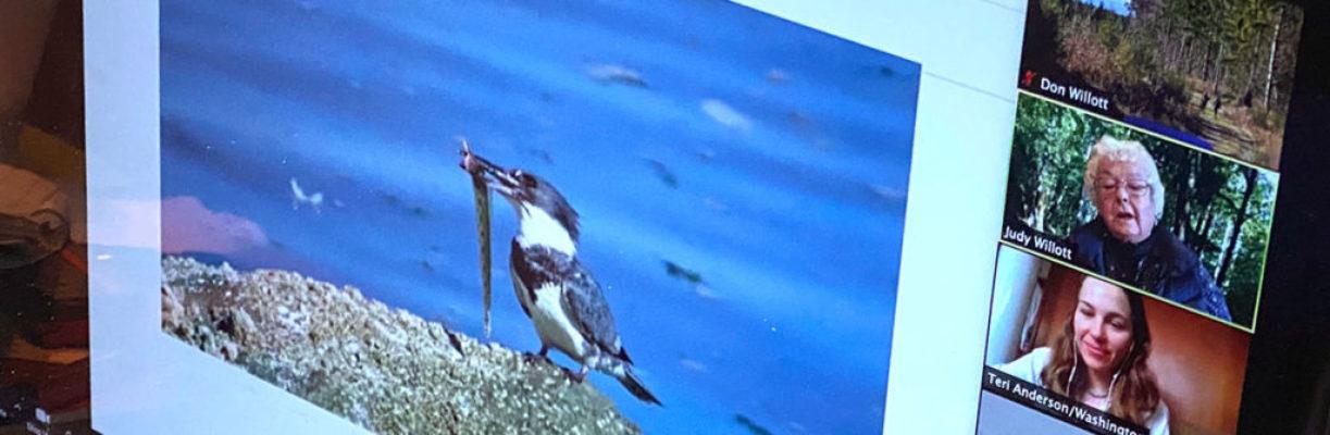 Kitsap Audubon Society